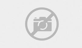 Kunststoffscheibe Stihl MS 380 038 MS381